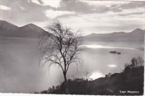 Switzerland Lago Maggiore Photo