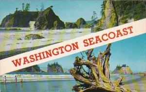 Washington Pacific Ocean Seacoast