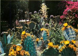 Spain Blanes botanical garden exotic plants postcard