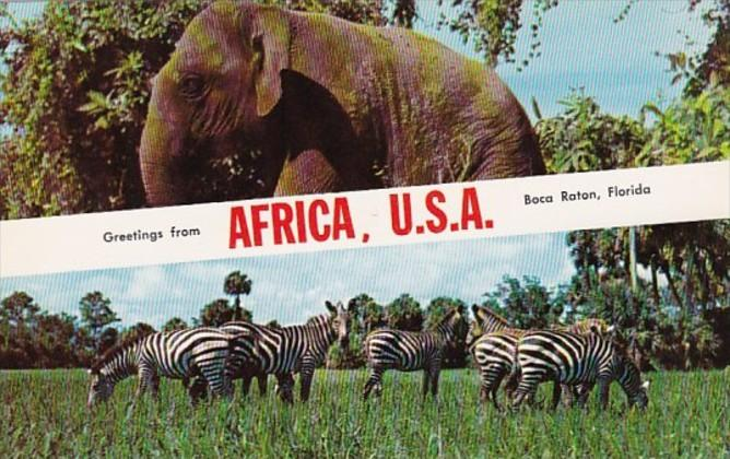Florida Boca Raton Greetings From Africa U S A Showing Elephant and Zebras