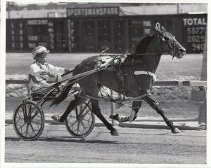 SPORTSMAN'S PARK, Harness Horse Racing, BRET'S BABY wins