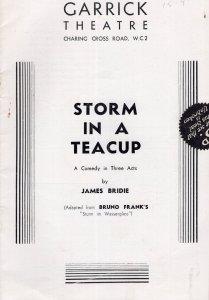 Storm In A Teacup Ivy Des Veoux James Bridie Garrick Theatre Programme
