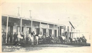 Pack Mules SILVER CITY Idaho Hotel, General Store ca 1920s? Vintage Postcard