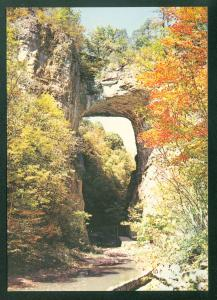 Natural Bridge Virginia Arch Fall Foliage Autumn VA Continental Postcard