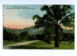 172183 GREETINGS from JAMAICA Botanical Gardens Hope Vintage