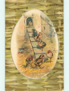 Pre-1907 easter signed CHICKS ON LADDER INTO CHICK HOUSE r2716