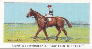 Captain Cuttle Winners On The Turf 1923 Prince Of Wales Stakes Horse Racing C...