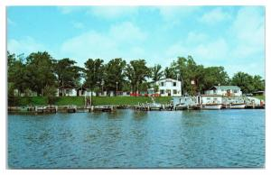 1950s/60s Adrian's Resort, Rainy River, Lake of the Woods, Baudette, MN Postcard