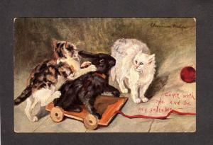 Artist Signed Cats Rabbit Valentine Postcard 1907 Vintage