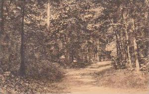 North Carolina Greensboro Entrance To Peabody Park Univ Of North Carolina Alb...