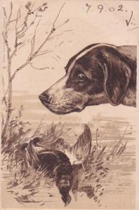 TUCK #3759; German Shorthaired Pointer Dog  watching over dead Pheasant, PU-1902