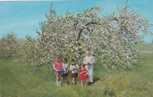 Apple Blossom Festival , Annapolis Valley , Nova Scotia , Canada , 40-60s