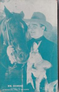 Vintage Cowboy Arcade Card William Desmond Introducing Lamb To His Horse