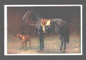 060618 Fine Black HORSE & GREAT DANE vintage color PC