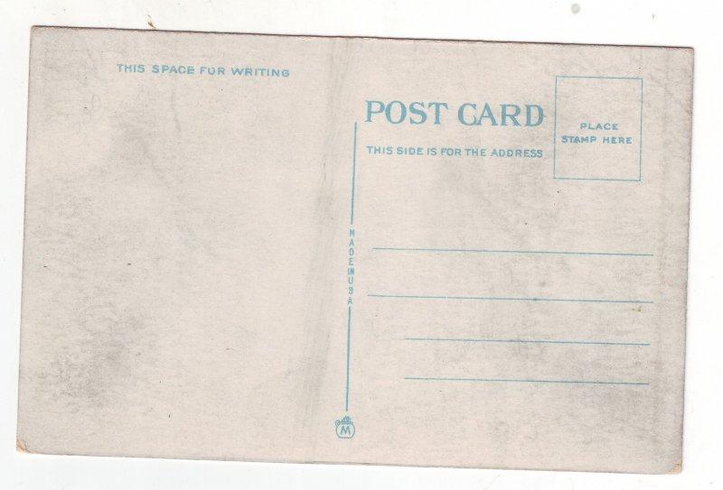 P1437 old unused postcard cars signs people fall st. niagara falls new york