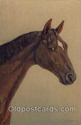 Artist Signed Kaufmann Horse Unused