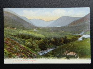 Scotland KINGUSSIE The Forest of Gaick - Old Postcard by J. Johnstone