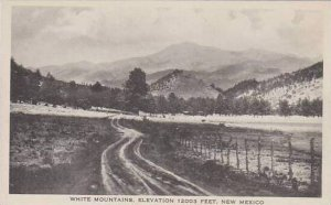 New Mexico White Mountain Elevation 12003 Feet Albertype