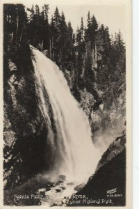 RP; Narada Falls , Paradise River , Rainier Nat. Park , Washington, 1910s