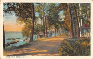 Budd Lake New Jersey Lake Road Antique Postcard J57774