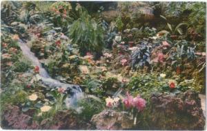 Waterfall & Rock Garden Knott's Berry Farm Ghost Town CA1958