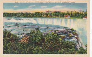 New York Niagara Falls Brink Of Horseshoe Falls From Terrapin Point