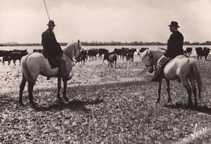 Menade Camargue French Cattle Herder Real Photo Postcard