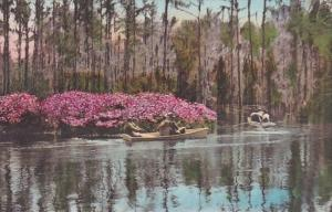 Cypress Gardens Summerville South Carolina Handcolored Albertype 1939