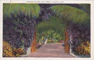 Bougainvillaea Arch Driver Florida 1936