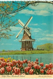 Buy Vintage Michigan Postcards Windmills Tulips from Netherlands