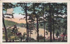 Kentucky Middlesboro Top Of Pinnacle Mountain 1933