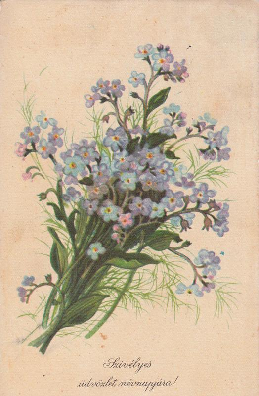 Blue Flowers Bouquet / Fleurs / Blumen / Name Day greetings Postcard / Hungary