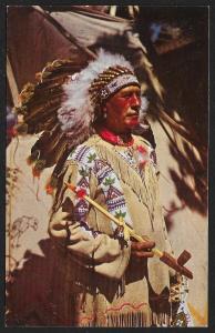 Chief Running Horse Arizona Unused c1950s