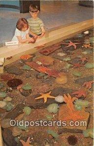 Oregon State University Newport, Oregon, USA 1975