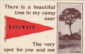 Pennant Series Rockwood Illinois 1914