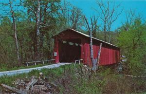 Cataract Falls Covered Bridge near Cataract, Owen County IN, Indiana