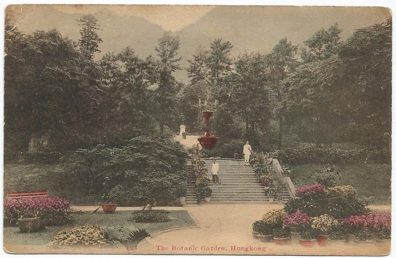 Hong Kong The Botanic Gardens vintage K M & Co color postcard