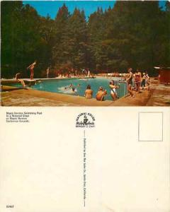 Swimming Pool at Mount Herman Conference Center, California Pre-zip code Chrome