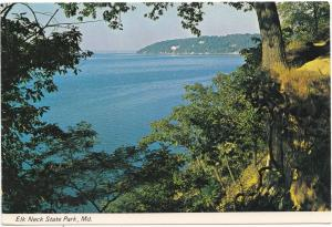 Elk Neck State Park, Maryland, unused Postcard