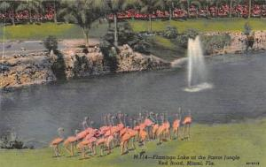 Bargain Page Discount Postcard