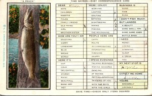 Humour Busy Person's Correspondence Card Fishing Day's Catch 1930