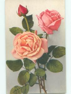 Very Old Foreign Postcard BEAUTIFUL FLOWERS SCENE AA4771