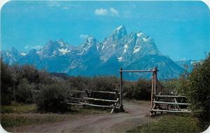 Grand Teton Jackson Hole Wyoming WY Postcard
