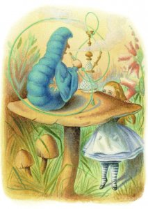 Alice In Wonderland The Caterpillar 1911 Book Postcard