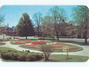 Pre-1980 TULIPS IN PLYMOUTH PARK Rochester New York NY c8474