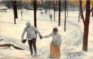 br105478 snow shoeing  mount royal montreal canada ski skate