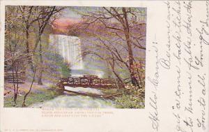 Minnesota Minneapolis WhereThe Falls Of Minnehaha 1904