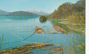 Canada Log Boom British Columbia