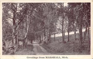 Marshall Michigan~Walk in the Woods~c1910 B&W Postcard