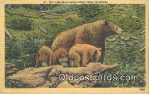 CA, USA Bear Unused corner wear